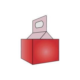 4 PK Bottle Carrier